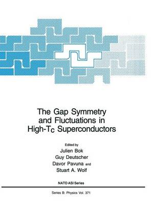 The Gap Symmetry and Fluctuations in High-Tc Superconductors - NATO Science Series B 371 (Paperback)