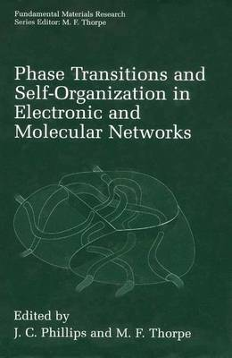 Phase Transitions and Self-Organization in Electronic and Molecular Networks - Fundamental Materials Research (Paperback)