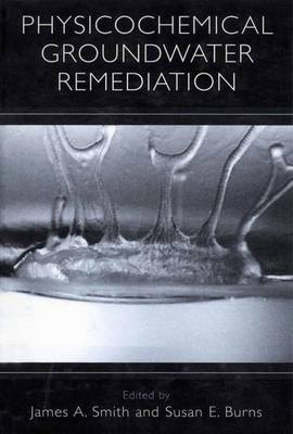 Physicochemical Groundwater Remediation (Paperback)
