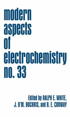 Modern Aspects of Electrochemistry - Modern Aspects of Electrochemistry 33 (Paperback)