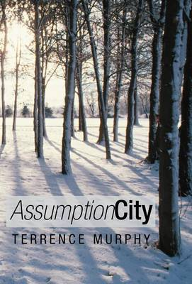 Assumption City (Hardback)
