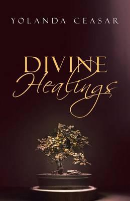 Divine Healings (Paperback)
