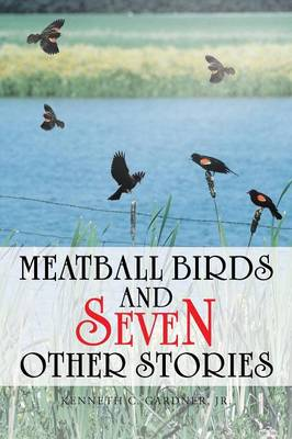 Meatball Birds and Seven Other Stories (Paperback)