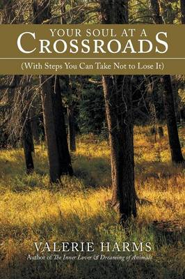 Your Soul at a Crossroads: (With Steps You Can Take Not to Lose It) (Paperback)