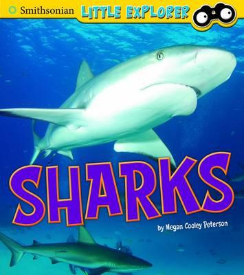 Sharks - Smithsonian Little Explorer (Hardback)