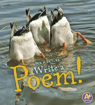 A Poem - Pick a Picture, Write (Paperback)