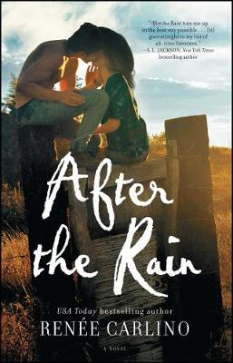 After the Rain: A Novel (Paperback)