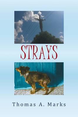 Strays (Paperback)