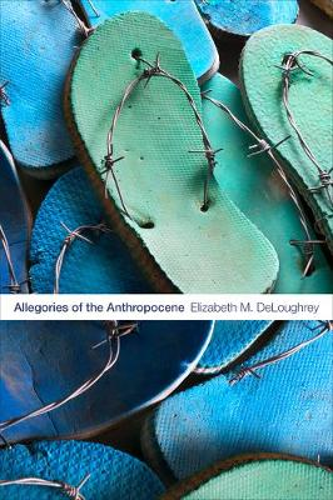 Allegories of the Anthropocene (Paperback)