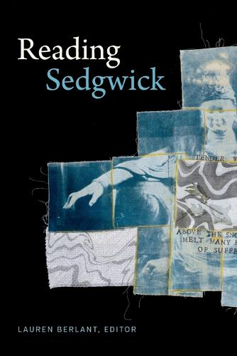 Reading Sedgwick - Theory Q (Paperback)