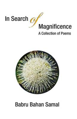 In Search of Magnificence: A Collection of Poems (Paperback)