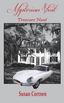 Mysterious Visit: Treasure Hunt (Paperback)