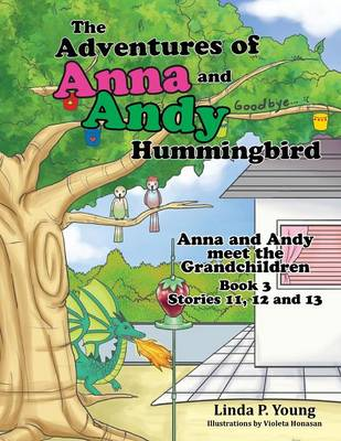 The Adventures of Anna and Andy Hummingbird: Anna and Andy Meet the Grandchildren, Book 3 Stories 11, 12 and 13 (Paperback)