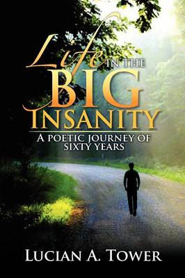 Life in the Big Insanity: A Poetic Journey of Sixty Years (Paperback)