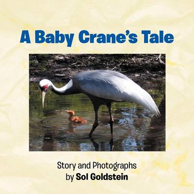 A Baby Crane's Tale (Paperback)