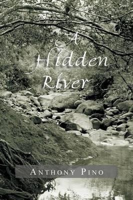 A Hidden River (Paperback)