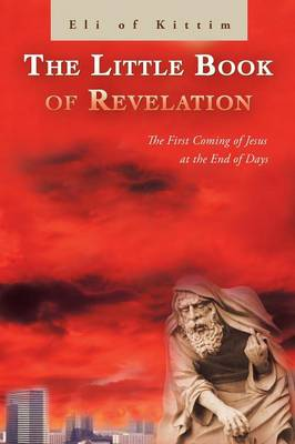 The Little Book of Revelation: The First Coming of Jesus at the End of Days (Paperback)
