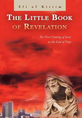 The Little Book of Revelation: The First Coming of Jesus at the End of Days (Hardback)
