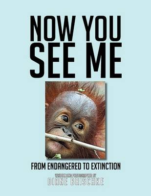 Now You See Me: From Endangered to Extinction (Paperback)