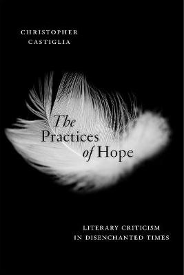 The Practices of Hope: Literary Criticism in Disenchanted Times (Hardback)