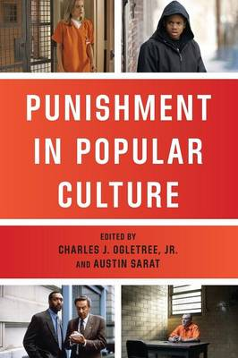 Punishment in Popular Culture - The Charles Hamilton Houston Institute Series on Race and Justice (Paperback)