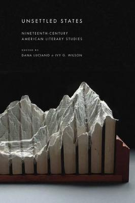 Unsettled States: Nineteenth-Century American Literary Studies - America and the Long 19th Century (Hardback)