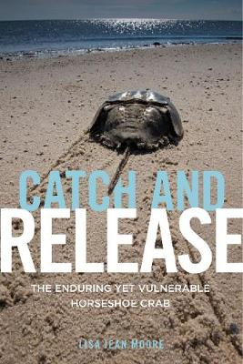 Catch and Release: The Enduring Yet Vulnerable Horseshoe Crab (Hardback)
