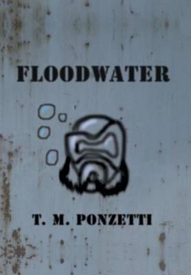 Floodwater (Hardback)