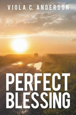 Perfect Blessing (Paperback)