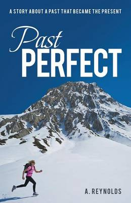 Past Perfect: A Story about a Past That Became the Present (Paperback)
