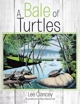 A Bale of Turtles (Paperback)
