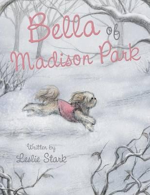Bella of Madison Park (Paperback)