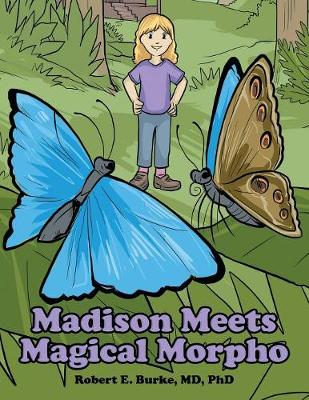 Madison Meets Magical Morpho (Paperback)