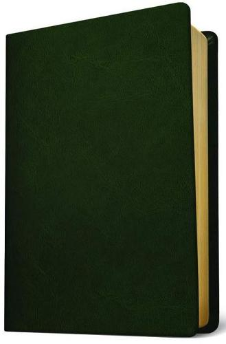 Baylor Annotated Study Bible (Leather / fine binding)