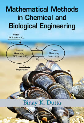 Mathematical Methods in Chemical and Biological Engineering (Hardback)