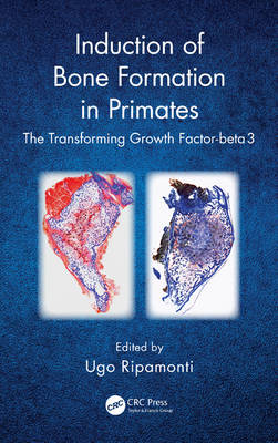 Induction of Bone Formation in Primates: The Transforming Growth Factor-beta 3 (Hardback)