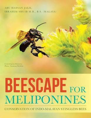 Beescape for Meliponines: Conservation of Indo-Malayan Stingless Bees (Paperback)
