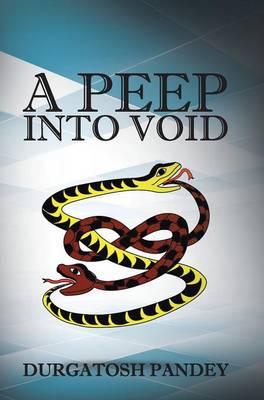 A Peep Into Void (Hardback)