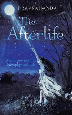 The Afterlife: A Journey Into the Metaphysical Life (Paperback)