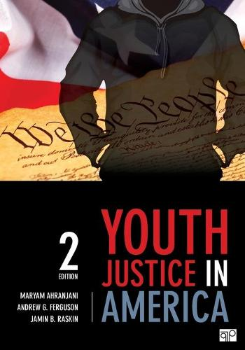 Youth Justice in America (Paperback)