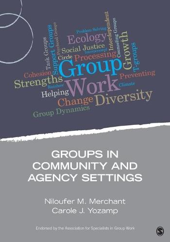 Groups in Community and Agency Settings - Group Work Practice Kit (Paperback)