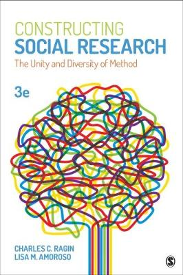 Constructing Social Research: The Unity and Diversity of Method (Paperback)