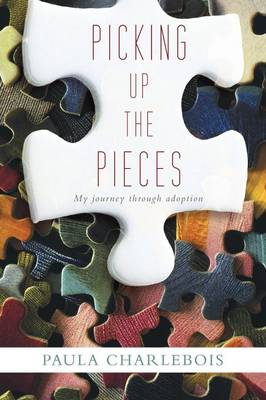 Picking Up the Pieces: My Journey Through Adoption (Paperback)