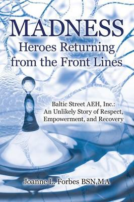 Madness: Heroes Returning from the Front Lines: Baltic Street Aeh, Inc.: An Unlikely Story of Respect, Empowerment, and Recovery (Paperback)