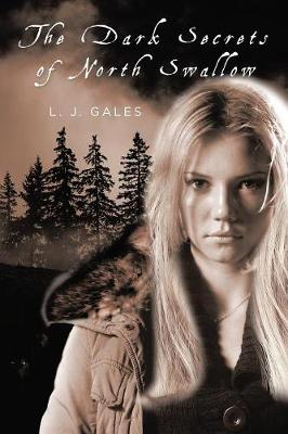 The Dark Secrets of North Swallow (Paperback)