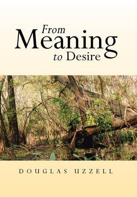 From Meaning to Desire (Hardback)