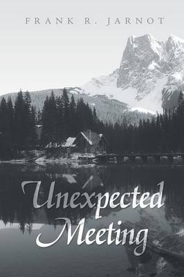 Unexpected Meeting (Paperback)
