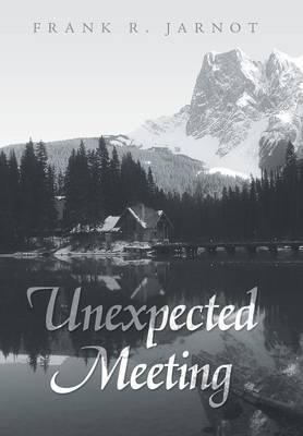 Unexpected Meeting (Hardback)