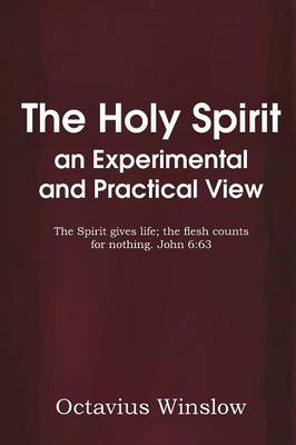 The Holy Spirit an Experimental and Practical View (Paperback)