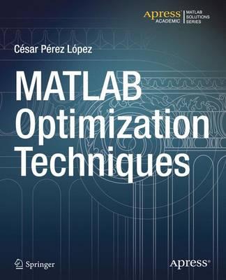 MATLAB Optimization Techniques (Paperback)